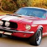 Shelby-ficha-tecnica1-150x150 Shelby - Preço, Modelos, Fotos 2019