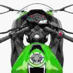 Kawasaki Ninja 300 – Preço, Fotos
